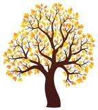 Jesień tematu drzewny wizerunek 3 Fotografia Stock