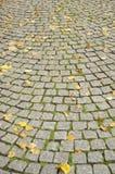 jesień ulica Obrazy Royalty Free