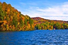 jesień ulistnienia jezioro Obraz Stock