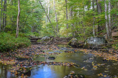 Jesień w Allegheny górach Obrazy Stock