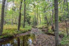 Jesień w Allegheny górach Fotografia Stock
