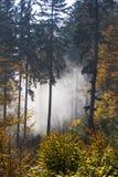 Jesień w Bavaria Obraz Stock