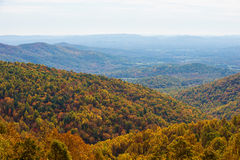 Jesień w Blue Ridge Mountains Fotografia Stock