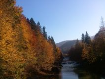 Jesień w Carpathians Obrazy Stock