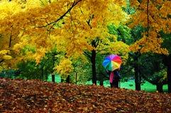 Jesień w centrala parku, Manhattan, nowy York Obrazy Stock