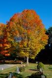 Jesień w cmentarzu Fotografia Royalty Free