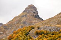 Jesień w górach Montenegro Fotografia Royalty Free
