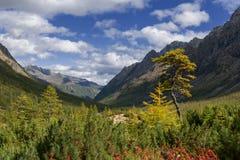 Jesień w góry Kodar grani Obraz Royalty Free