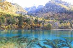 Jesień w jiuzhaigou, Chiny Obrazy Royalty Free