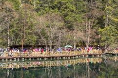 Jesień w jiuzhaigou, Chiny Zdjęcia Royalty Free