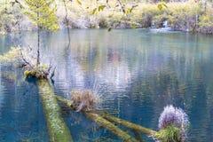 Jesień w jiuzhaigou, Chiny Obrazy Stock