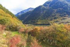 Jesień w jiuzhaigou, Chiny Zdjęcia Stock
