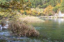 Jesień w jiuzhaigou, Chiny Zdjęcie Stock