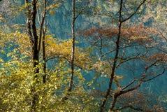 Jesień w jiuzhaigou, Chiny Obraz Stock