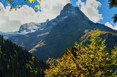 Jesień w Kaukaz Zdjęcie Stock