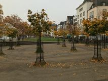 Jesień w Kolonia Obraz Royalty Free