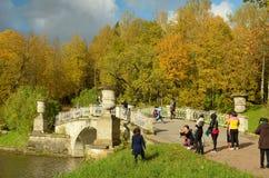 Jesień w lasu parku Obraz Stock
