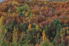 Jesień w Ordesa Ordesa Dolinnym parku narodowym - Monte Perdido obraz stock
