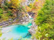 Jesie? w Ordesa parku narodowym, Pyrenees, Huesca, Aragon, Hiszpania Z wspaniałą kolorystyką tworzył liśćmi sosny, jodły zdjęcia royalty free