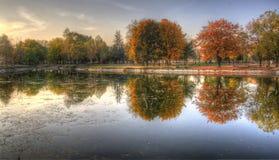 Jesień w parku Obraz Royalty Free