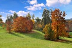 Jesień w parku Zdjęcia Stock