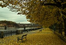 Jesień w parku w Praga Zdjęcia Royalty Free