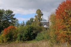 Jesień w Rosyjskiej wiosce, Yaroslavl region Zdjęcie Stock