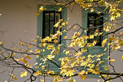 Jesień w Sinaia, Rumunia Fotografia Stock
