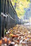 Jesień w Turyn Zdjęcia Stock