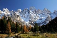 Jesień w Venegia dolinie Fotografia Royalty Free