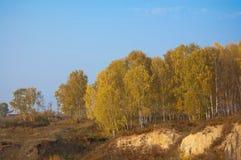 Jesień w wiosce Fotografia Royalty Free