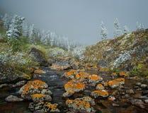 Jesień w Wschodnich Sayan górach Obrazy Royalty Free