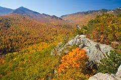 jesień widok Obraz Stock