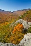 jesień widok Obrazy Stock