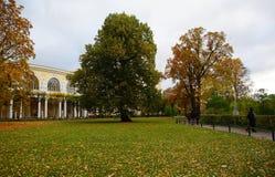 Jesień wieczór w Pavlovsk parku Zdjęcie Stock