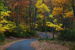 jesień wiejska droga Obrazy Royalty Free