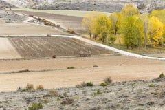 jesień wiejski krajobrazowy Zdjęcie Royalty Free