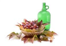 Jesień wino owoc i Obraz Stock