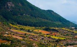 Jesień winogradu czerwieni krajobraz France Zdjęcie Royalty Free