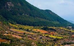 Jesień winogradu czerwieni krajobraz France Zdjęcie Stock