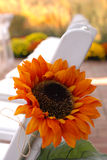 jesień wystrój Zdjęcia Royalty Free