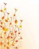 jesień wzór Fotografia Royalty Free