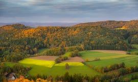 Jesień zmierzch nad forrest Zdjęcia Stock