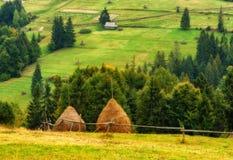 Jesień zmierzch w Karpackich górach obraz royalty free