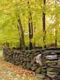 jesienią ściany obraz stock