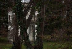 jesienią abstrakcyjne tła zestaw projektów Zdjęcia Royalty Free