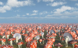 jesienią amanita muscaria grzybów niebezpieczeństw Obrazy Stock