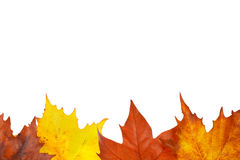 jesienią do granicy Obrazy Royalty Free