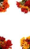 jesienią granice kwiaty Fotografia Royalty Free