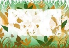 jesienią green tła Zdjęcia Stock